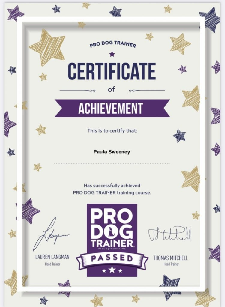 PDT certificate