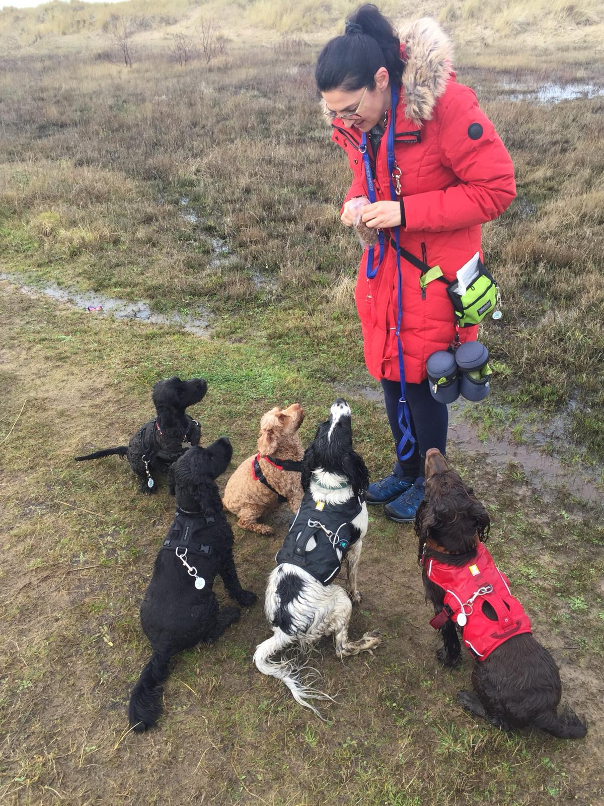 Paula from Paulas Pet Services with group of dogs